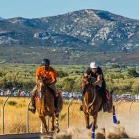 Carrera de caballos de la La Sénia