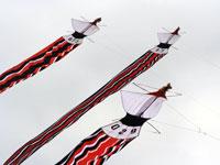 Janggan Kite - Bird Shaped