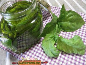 conservare il basilico sott olio