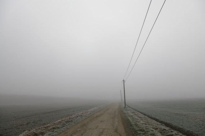 Fotografieren in Niederbayern im Nebel