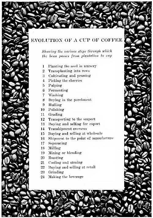 Evolution of a Cup of Coffee