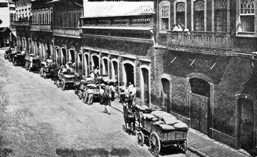 Coffee From the Fazendas Is Delivered at the Commissarios' Warehouses in Rio