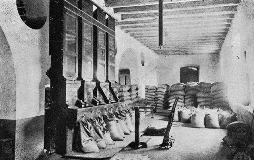 Interior of a Santos Cleaning and Grading Warehouse