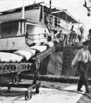 Unloading Coffee with Modern Conveyor, New Orleans
