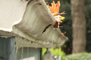 Rainwater Enter Home Faulty Gutters in Austin