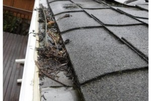 What Causes Gutter to Overflow in Austin TX