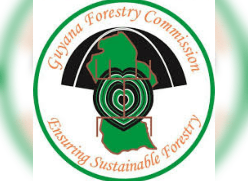 Backed by the government, the forest industry and carbon market experts, the code is unique in providing woodland carbon units right here in the uk. Ppp Coalition Differ On Financial Status Of Forestry Commission Guyana Standard