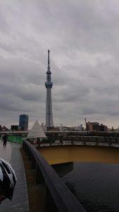 Tokyo Skytree and the Sakura Bridge
