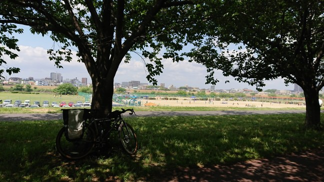 Kuroko resting in the shade