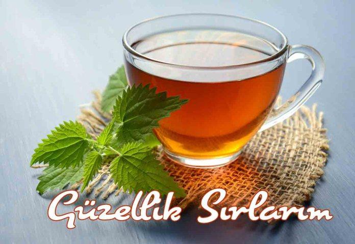Yeşil Çay Zayıflama Kürü