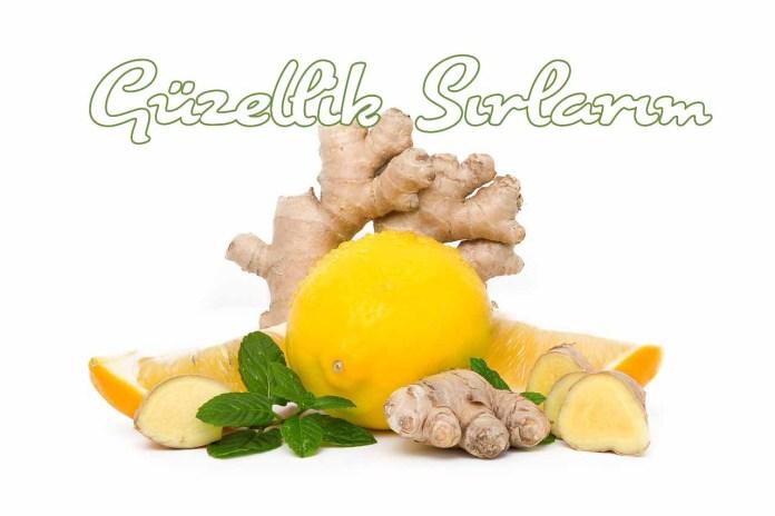 Zencefil, Limon, Nane Ve Salatalık