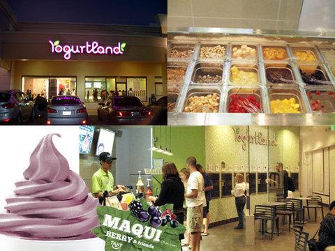 110228-yogurt-land.jpg