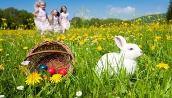 130325-easter-bunny.jpg