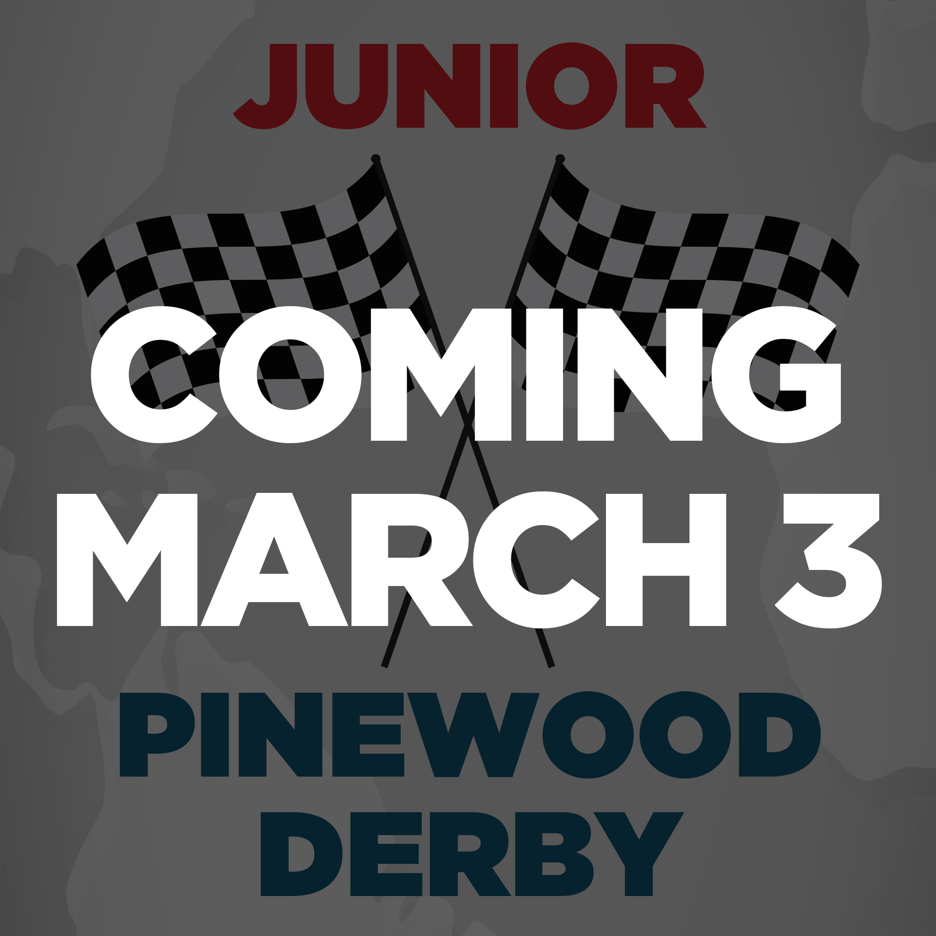 11th-Pinewood-Derby