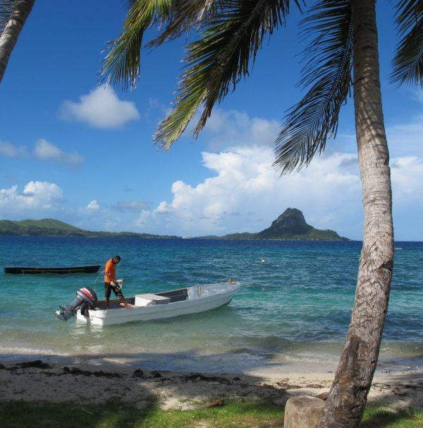 Marine Conservation Expedition in Fiji | GVI UK