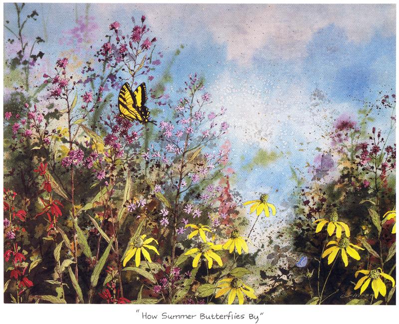 How Summer Butterflies By