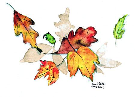 Lazy Leaves