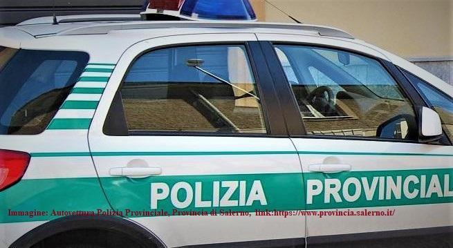 Polizia Provinciale: oltre 500 controlli eseguiti - Gwendalina.tv