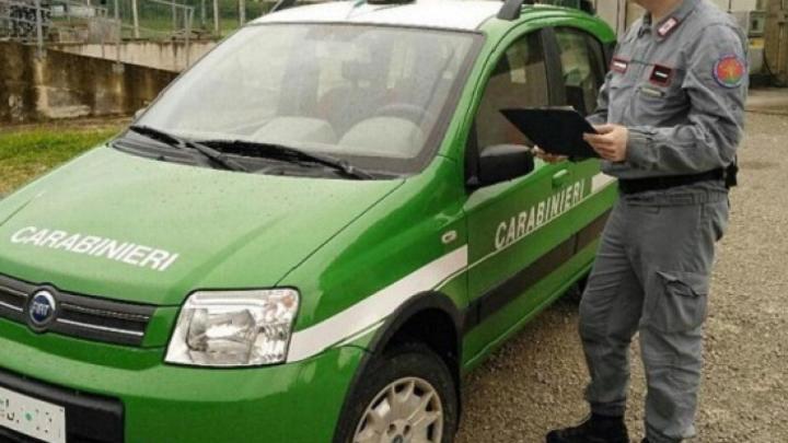 Campora, anziano disperso ritrovato a 15km da casa - Gwendalina.tv