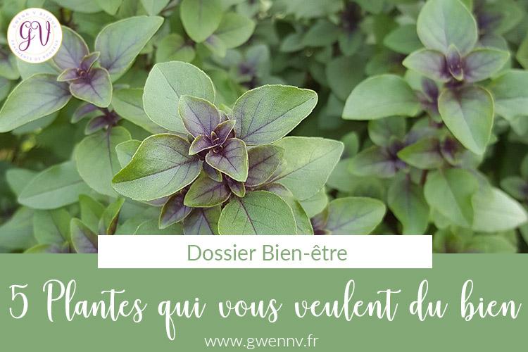 5 plantes qui vous veulent du bien