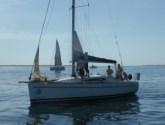 Elan 340 G-whizz Sail Port Stephens No Wind