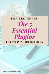 5 Plugins for Beginners