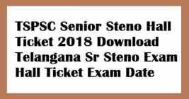 TSPSC Senior Steno Hall Ticket