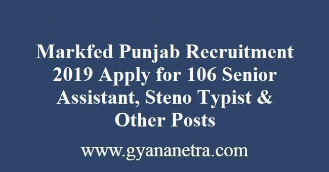Markfed Punjab Recruitment