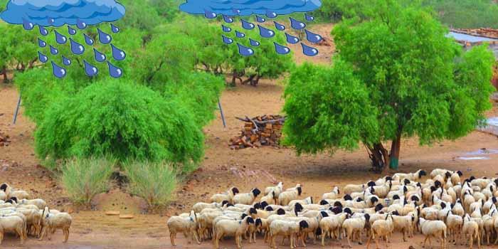 हठीलो राजस्थान-44, जलवायु पर दोहे