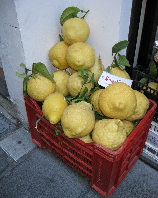 Photo: Amalfi lemons are famous, especially for making limoncello. Credit: Lisa Borre.