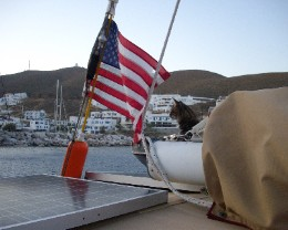 Photo: Cat on sailboat. Credit: L. Borre.