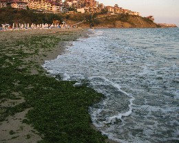 Photo: Sveti Vlas, Burgas Bay, Bulgaria. Credit: Lisa Borre.
