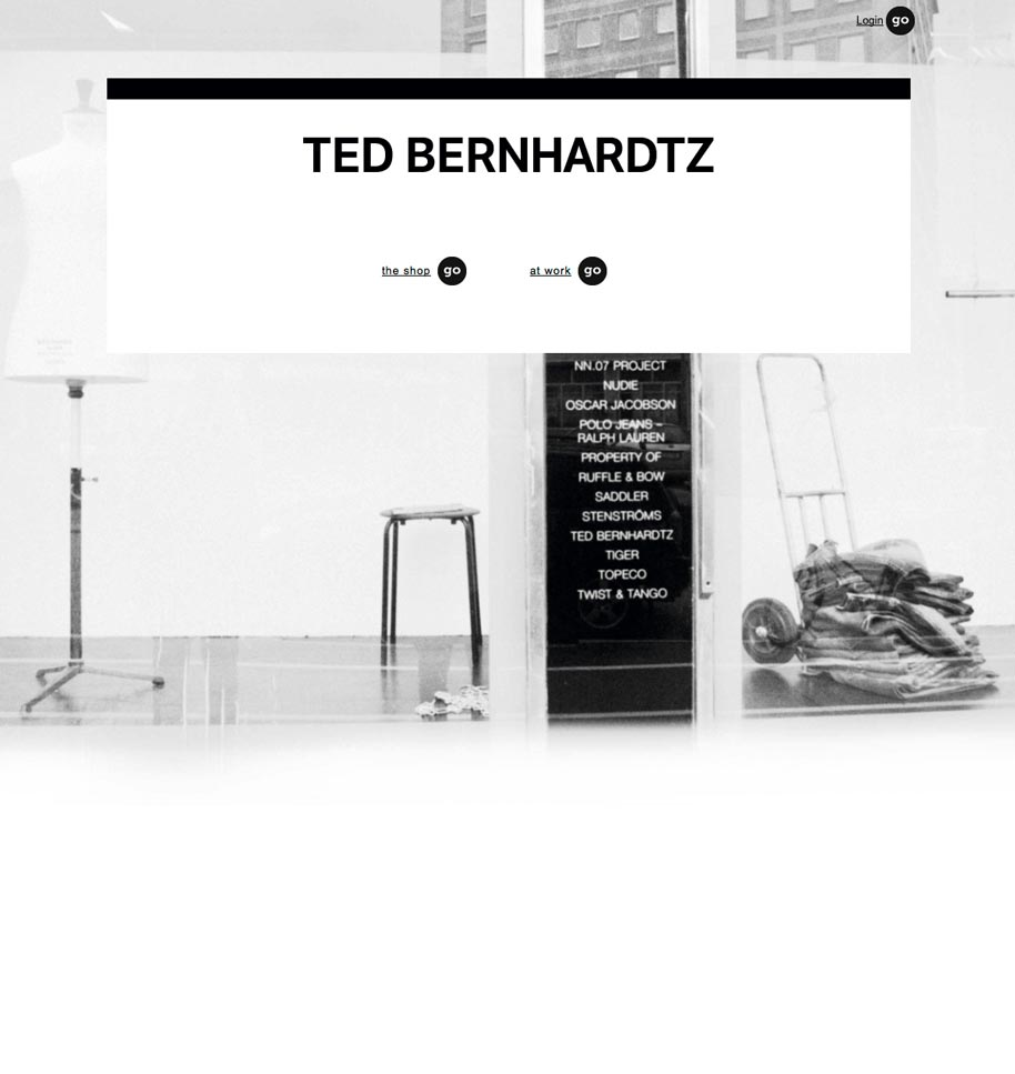 Ted_b_website_01