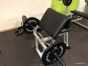 Silverline Technogym Scottcurlbänk