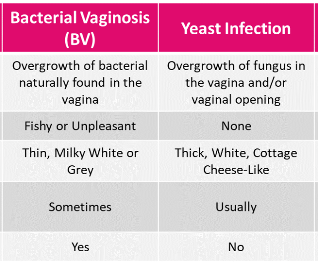 Bacterial Vaginosis Bv Is The Most Common Cause Of Vaginitis With Approximately 50 Of All Vaginal Infections Classified As Bacterial Vaginosis