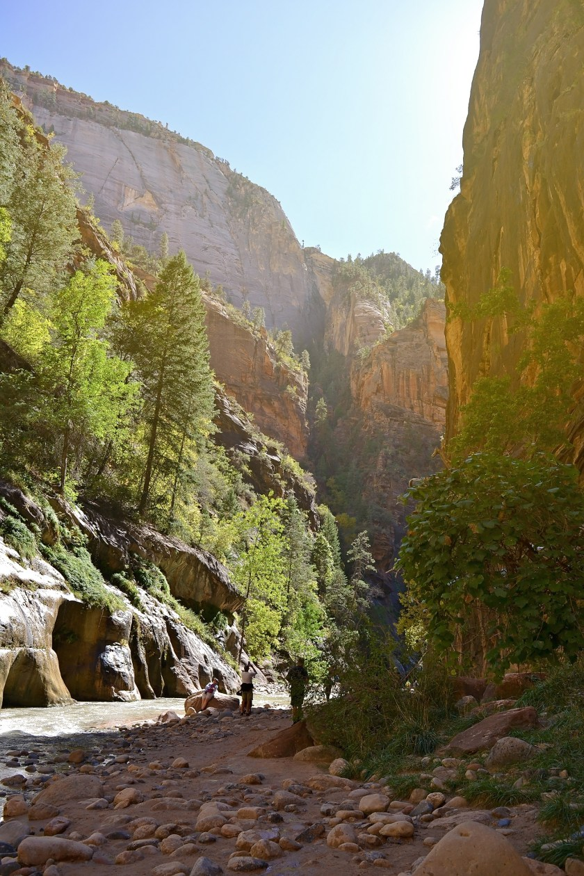 5-zion-national-park-day-trip-hiking-usa