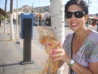 holding a komodo dragon in Cabo town
