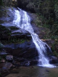 A beautiful waterfall in the Brazilian jungle close to the city in Rio on the way to the Cristo Redentor