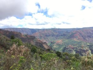 Waimea Canyon on Kauai