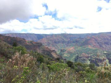 Waimea Canyon on Kauai