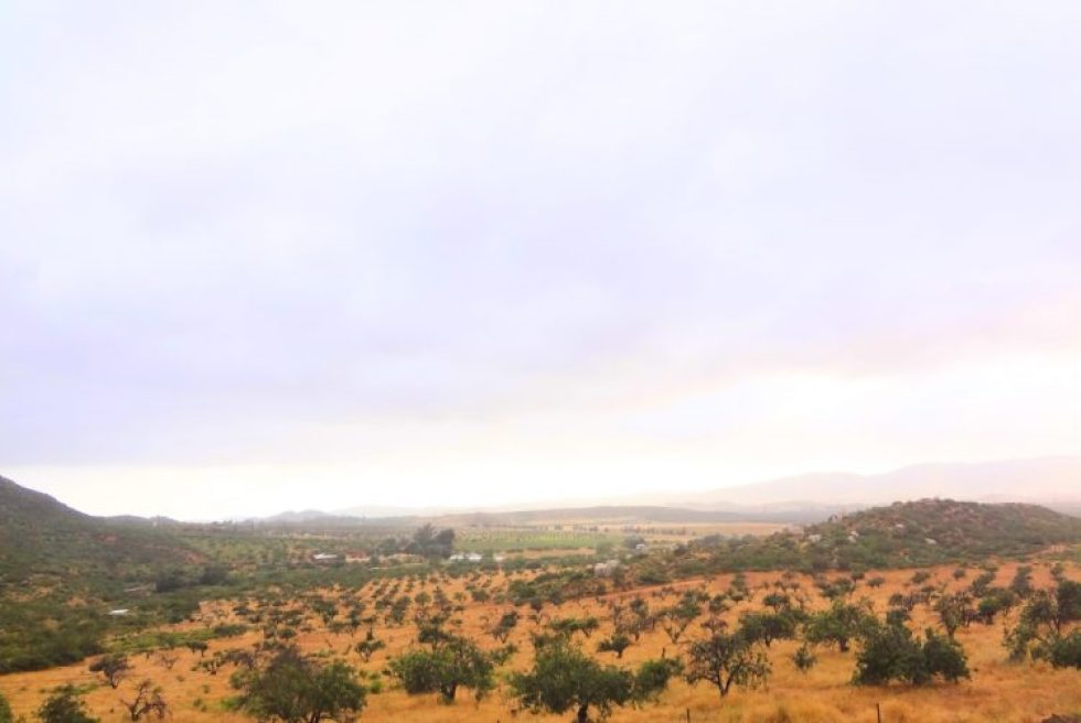 The view from Cieli winery in Valle de Guadalupe