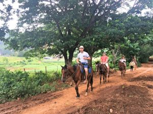 Viñales horses back riding
