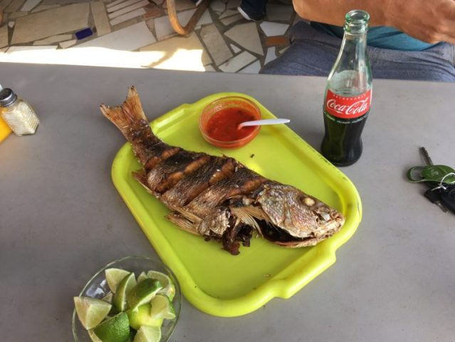 Lunch in Popotla fishing village