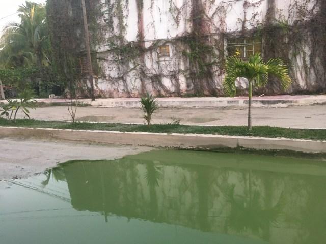 isla holbox sewage