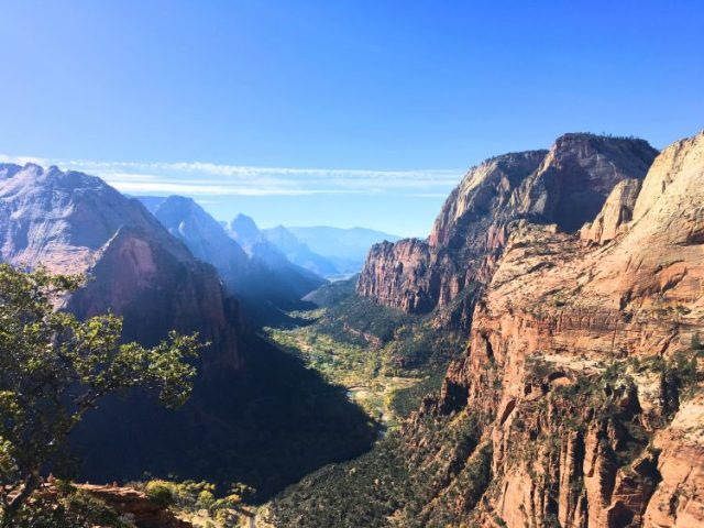 Zion during a Cross Country Road Trip