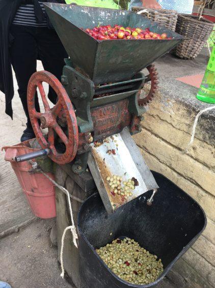 coffee machine salento