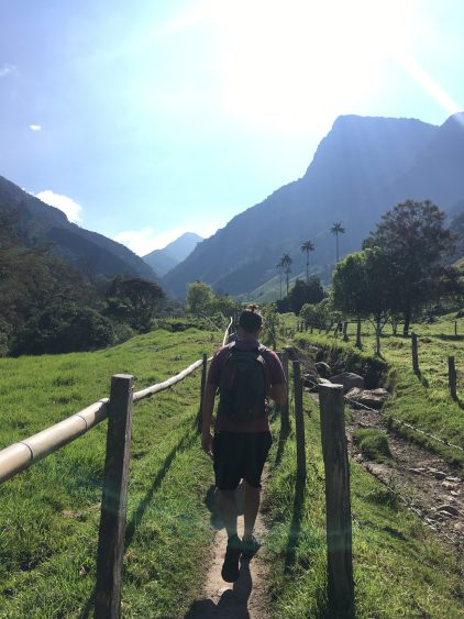 hiking cocora valley salento