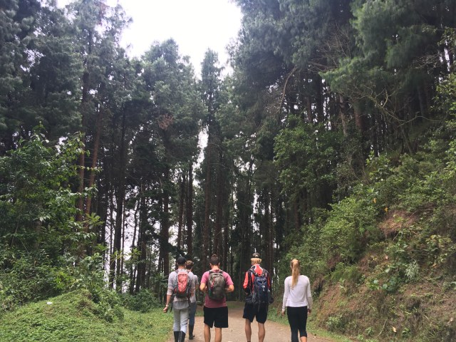 hiking in salento colombia