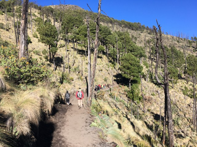 hiking to acatenango volcano