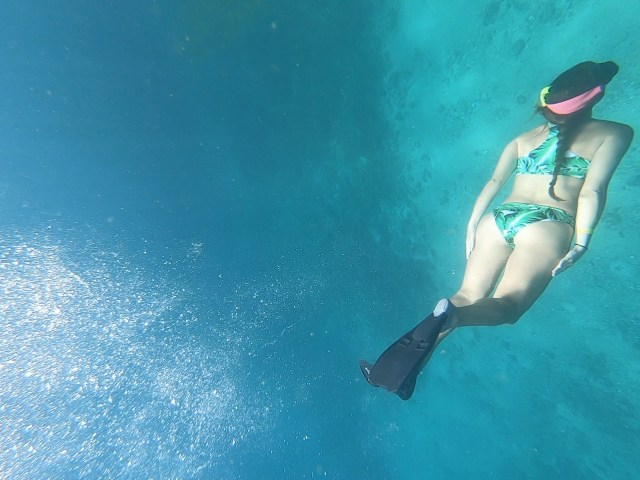 isla tortuga snorkeling